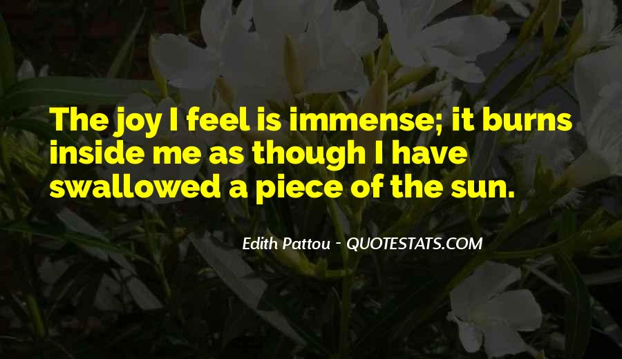 Feel The Sun Quotes #202599