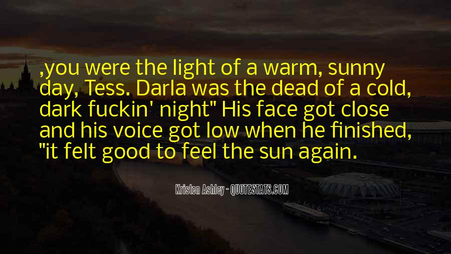 Feel The Sun Quotes #255099