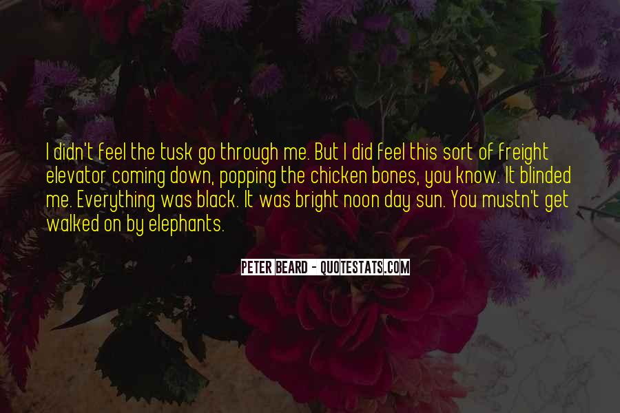 Feel The Sun Quotes #343623