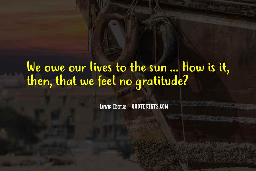Feel The Sun Quotes #411613