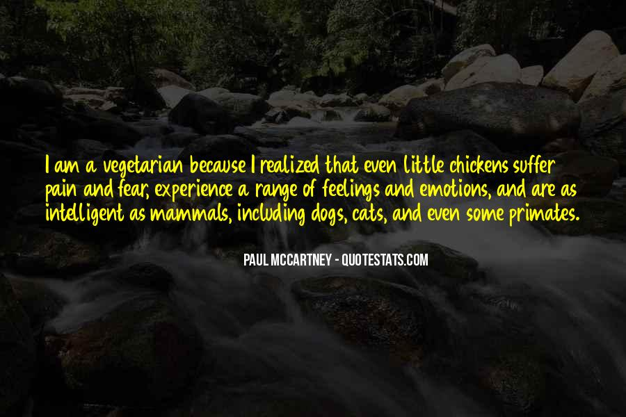 Feelings Pain Quotes #454789