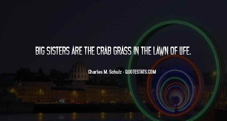 Quotes About Having Big Sisters #926249