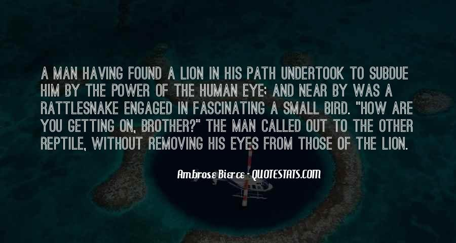 Quotes About Having A Brother #1395551