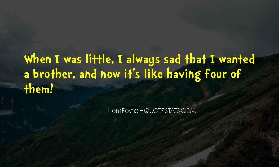 Quotes About Having A Brother #1416706