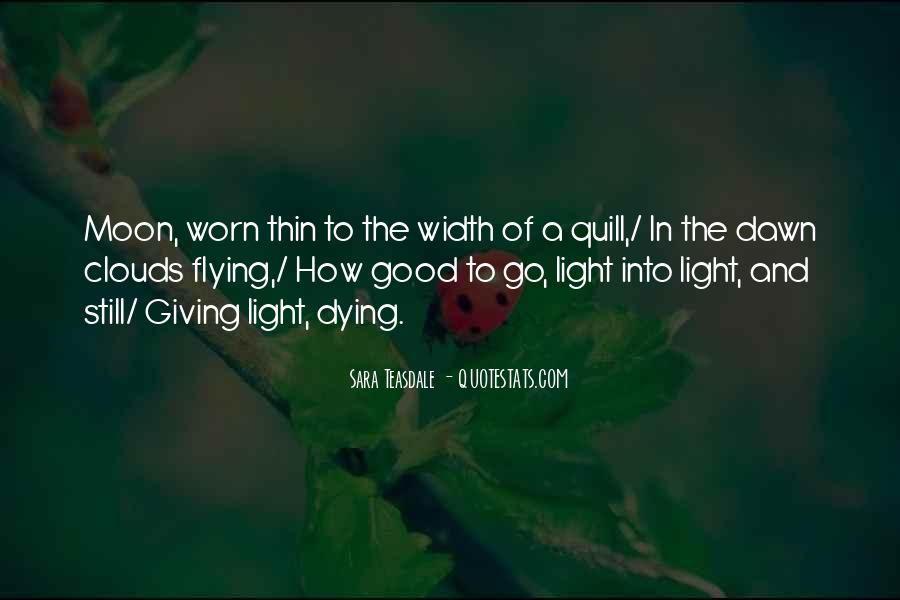 Flying Over Clouds Quotes #1469047