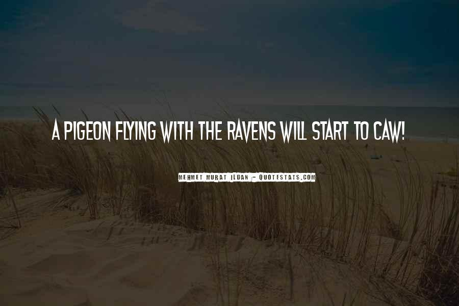 Flying Pigeon Quotes #351248