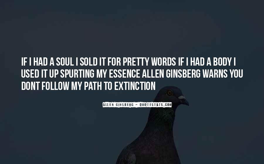 Follow Your Soul Quotes #1206801