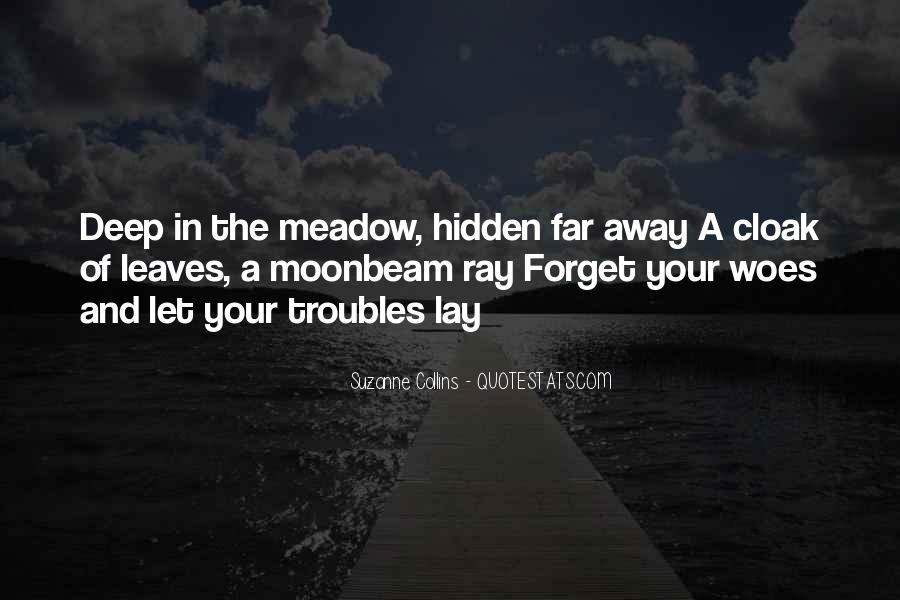 Forget All Your Troubles Quotes #689238