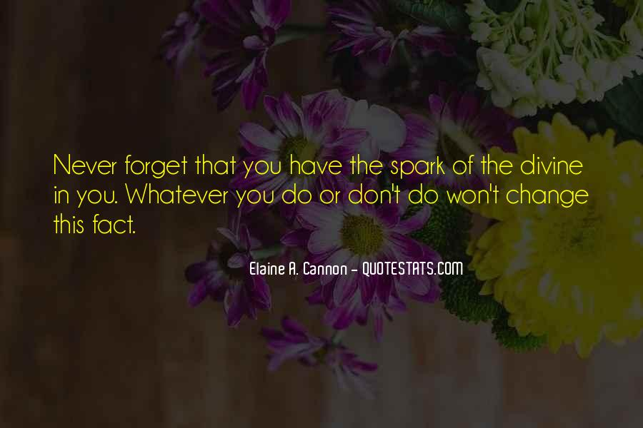 Forget You Never Quotes #149889