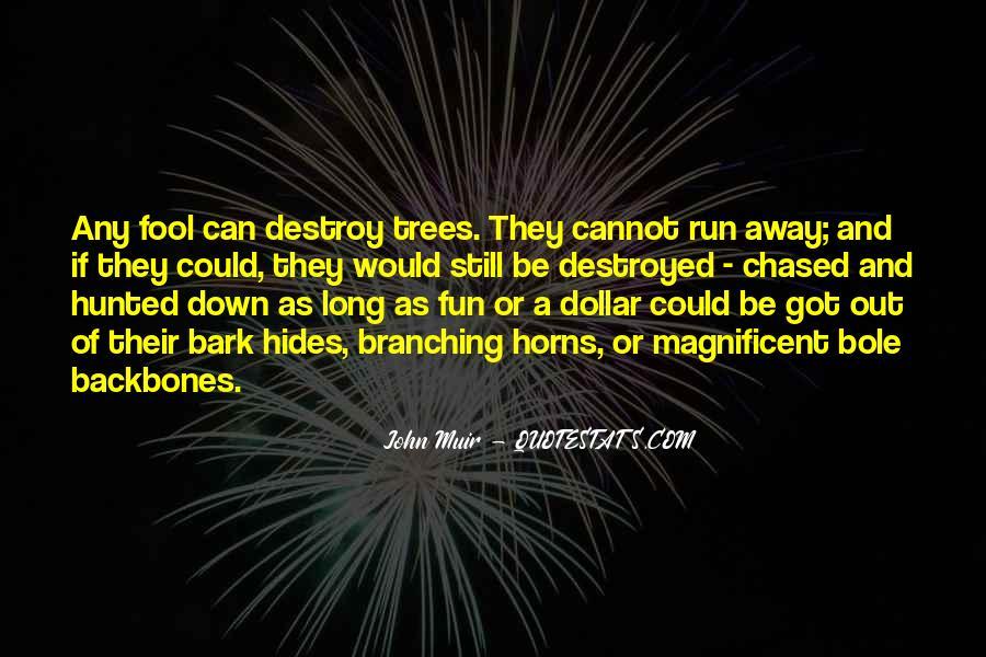 Fun And Run Quotes #1701803