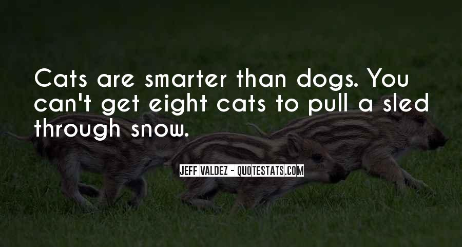 Funny Cat Vs Dog Quotes #1087490