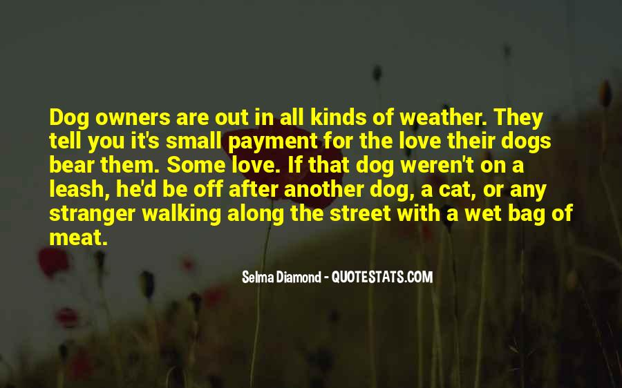 Funny Cat Vs Dog Quotes #666739