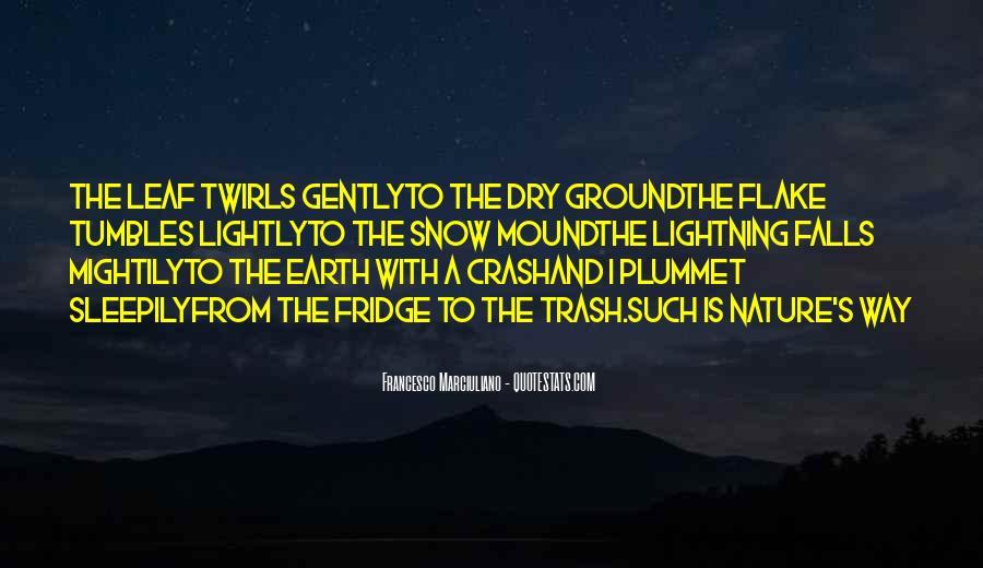 Funny Fridge Quotes #1688495