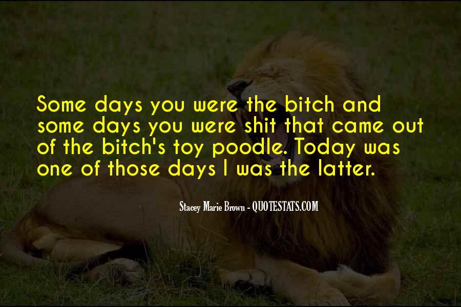 Funny Random Quotes #676025