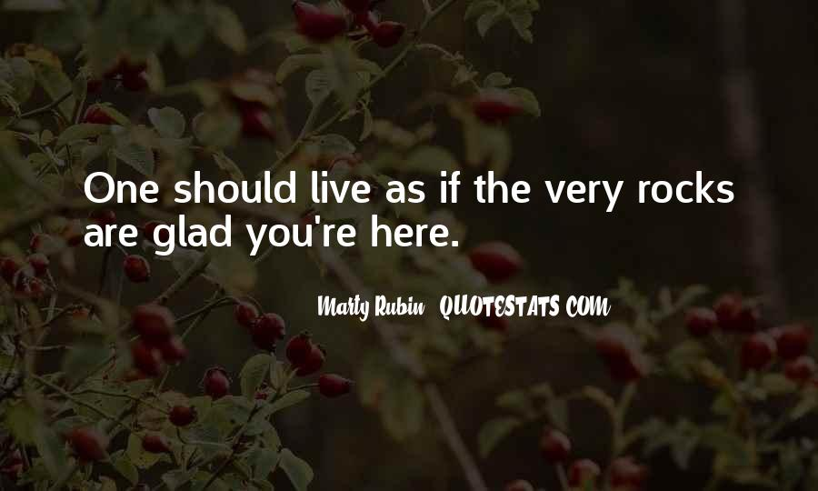 Glad You Are Here Quotes #563953