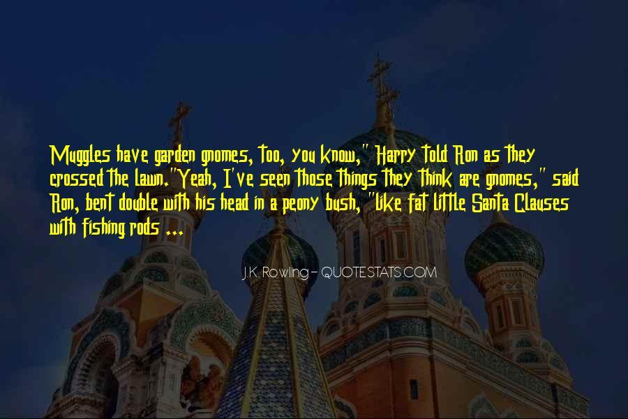 Gnome Quotes #1139652