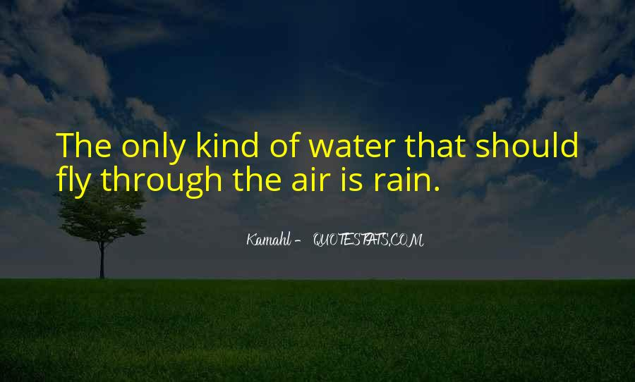 Go Through The Rain Quotes #248425