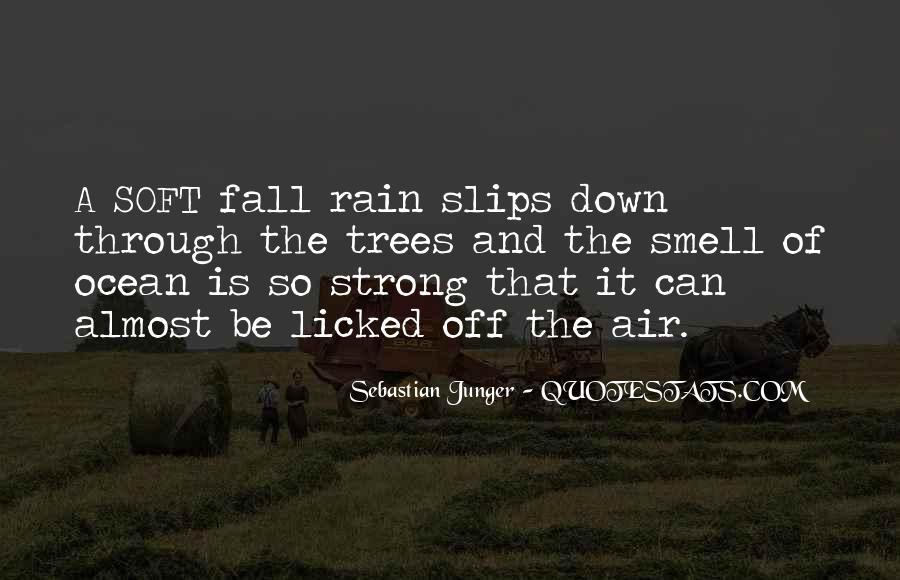 Go Through The Rain Quotes #336372