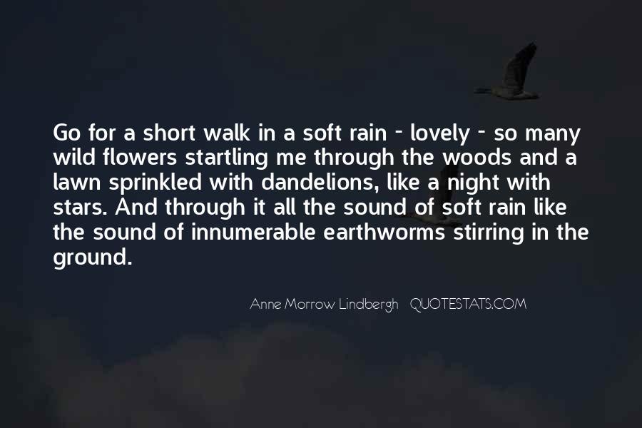 Go Through The Rain Quotes #80440