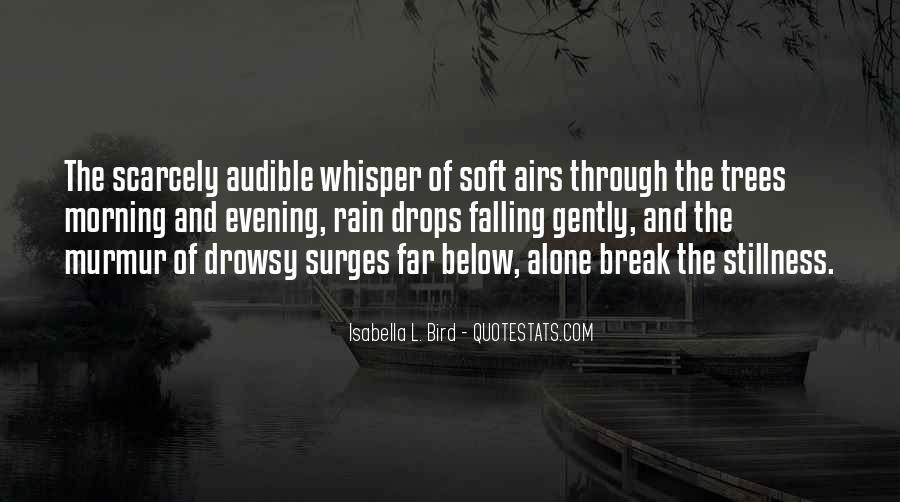 Go Through The Rain Quotes #83336