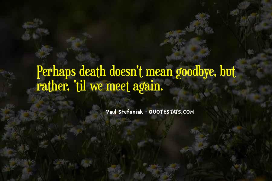 Goodbye For Now Until We Meet Again Quotes #276758