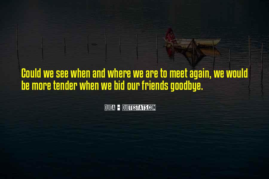 Goodbye For Now Until We Meet Again Quotes #5446