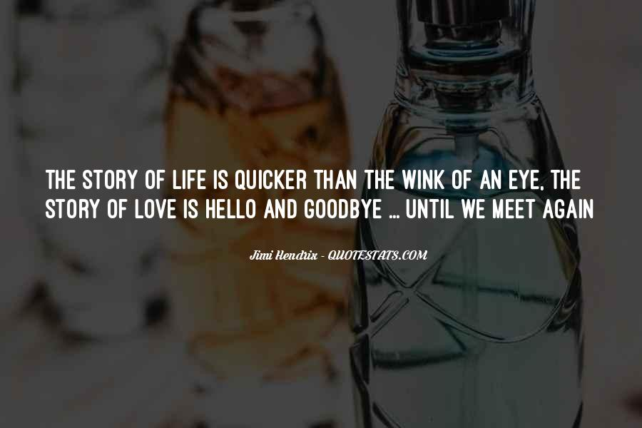 Goodbye For Now Until We Meet Again Quotes #806017