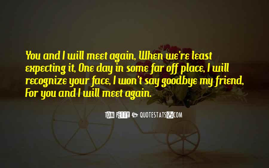 Goodbye For Now Until We Meet Again Quotes #80814
