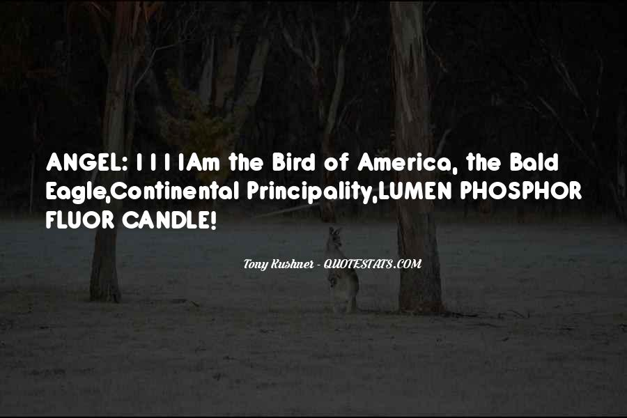 Quotes About The Eagle Bird #525746