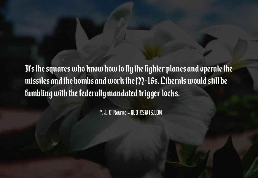Quotes About Funny Planes #1019047