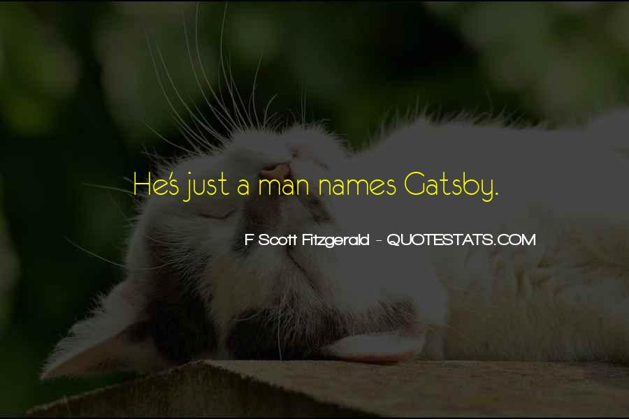 Great Gatsby Novel Quotes #537629