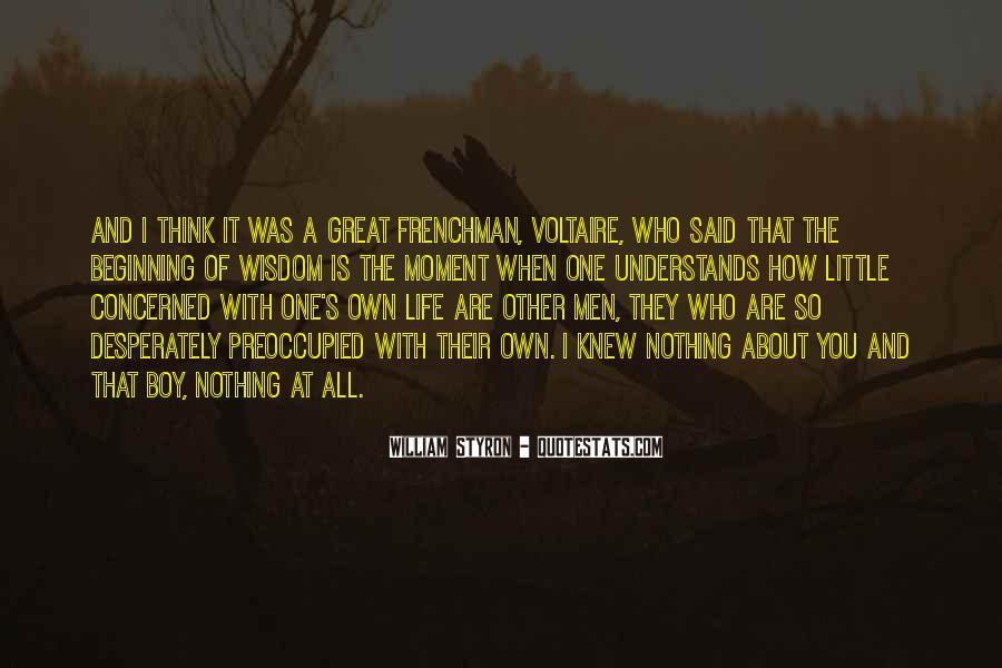 Grimalkin Iron Fey Quotes #1849104