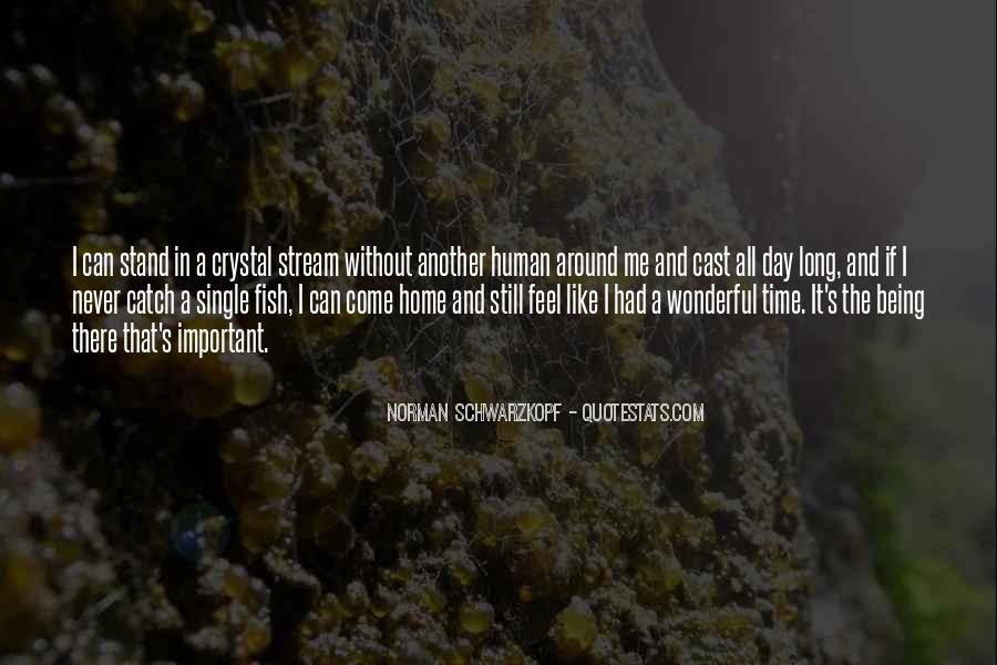 Had Wonderful Day Quotes #1807092