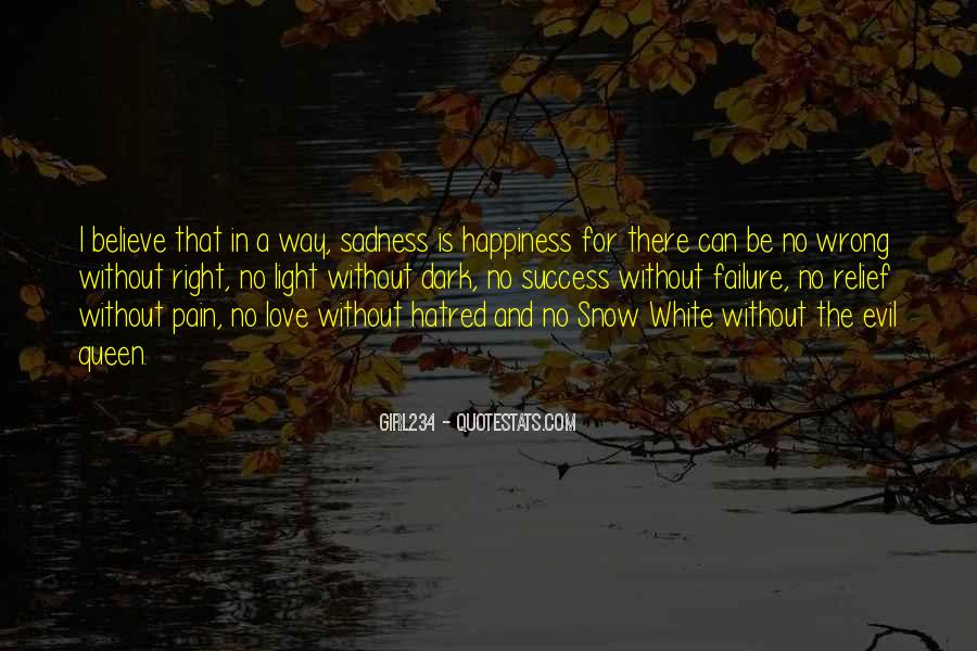 Happiness Then Sadness Quotes #102228