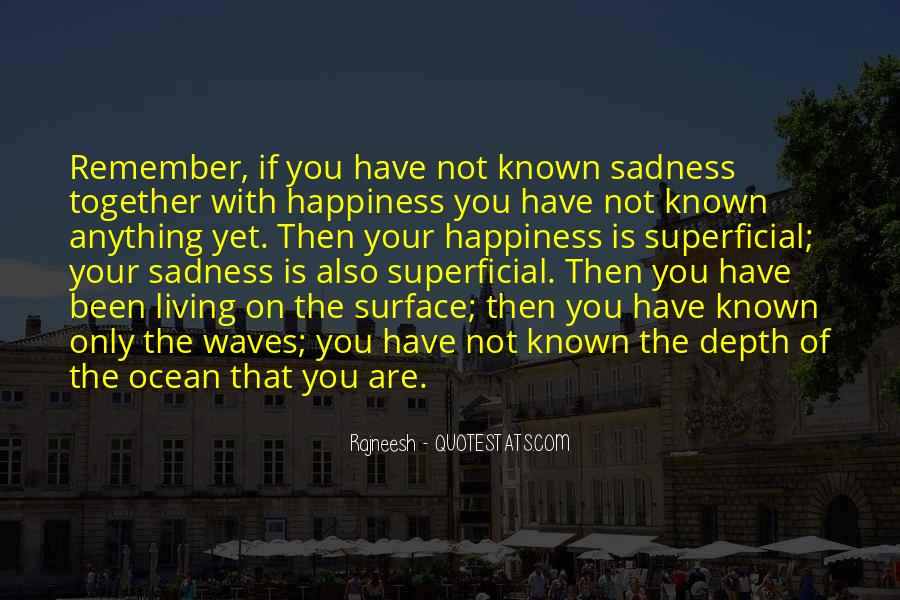 Happiness Then Sadness Quotes #973592