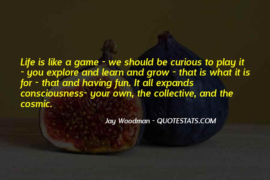 Having Fun Life Quotes #234553