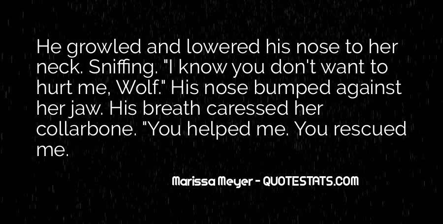 He Hurt Her Quotes #892485