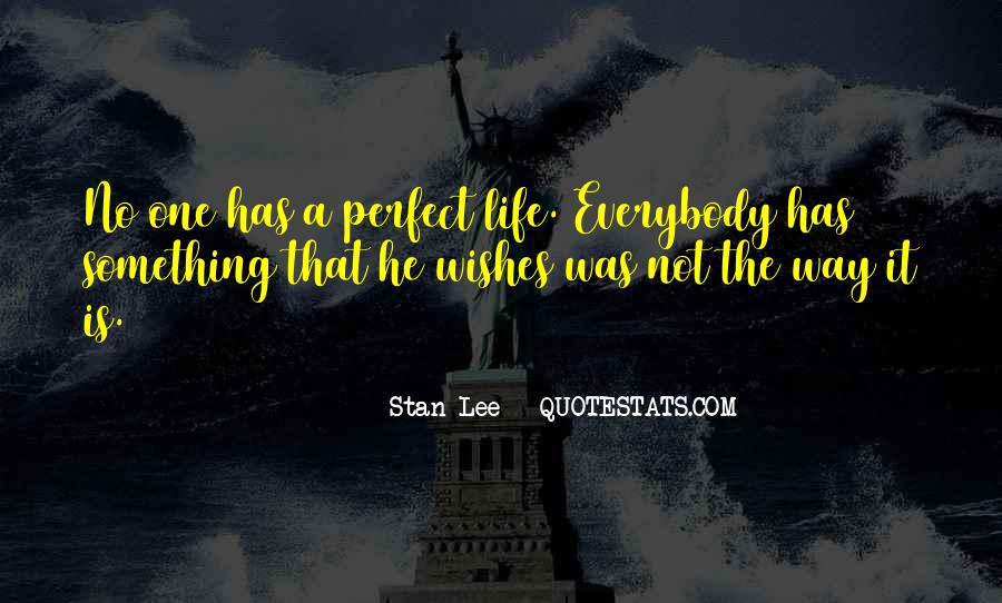 He Is Not Perfect Quotes #1034069