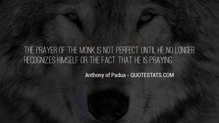 He Is Not Perfect Quotes #118774