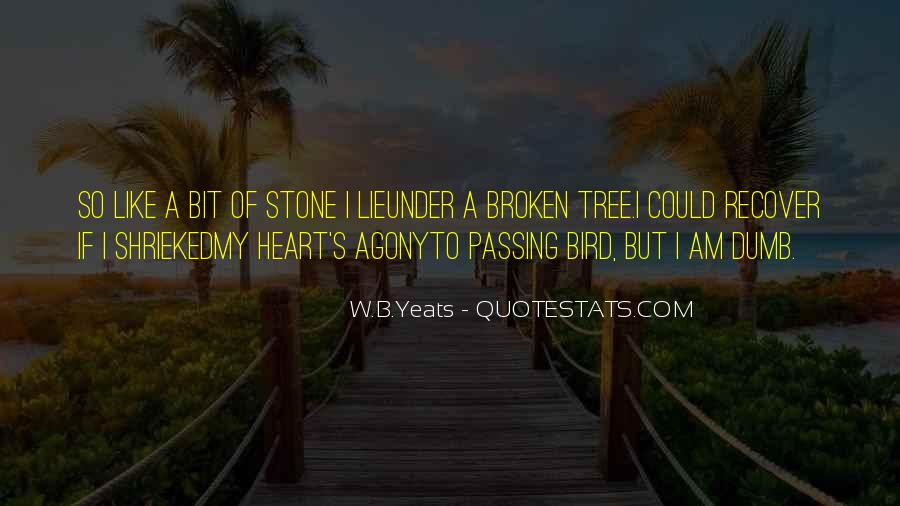 Heart Like Stone Quotes #1528202