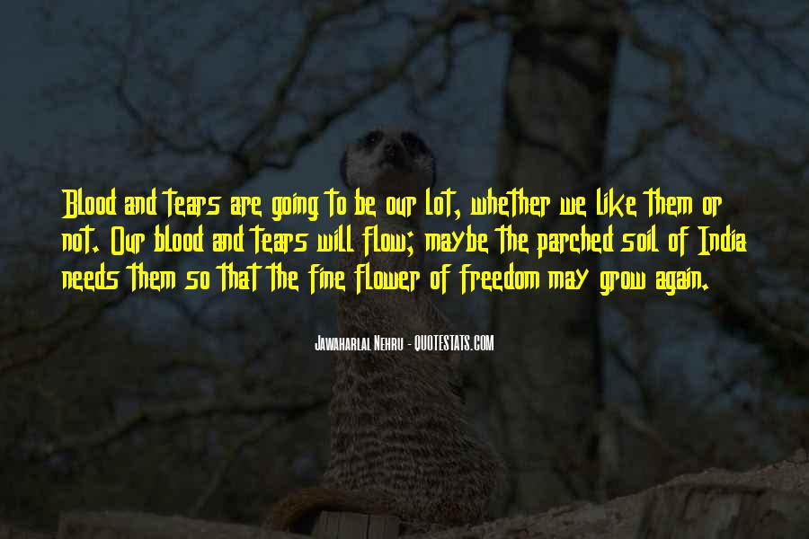 Quotes About Freedom Of India #67074