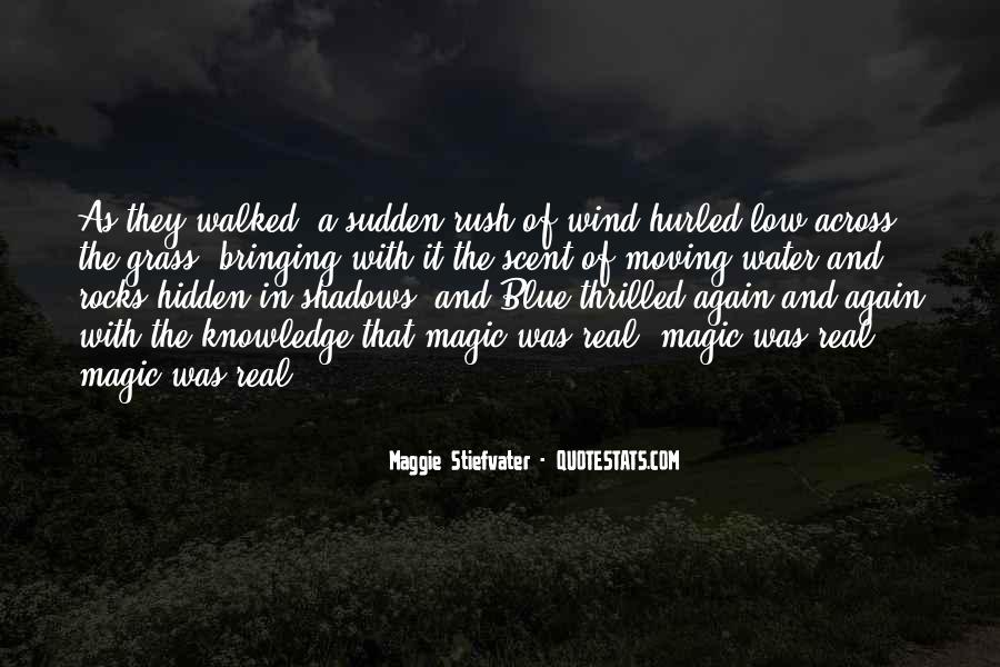 Hidden In The Shadows Quotes #1491978