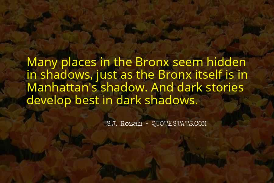 Hidden In The Shadows Quotes #377515