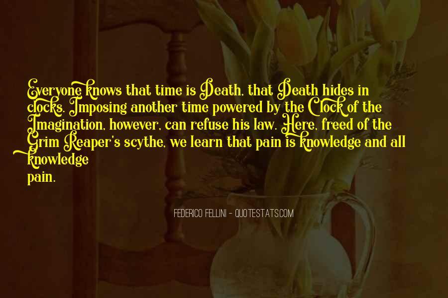 Hides Pain Quotes #1752766