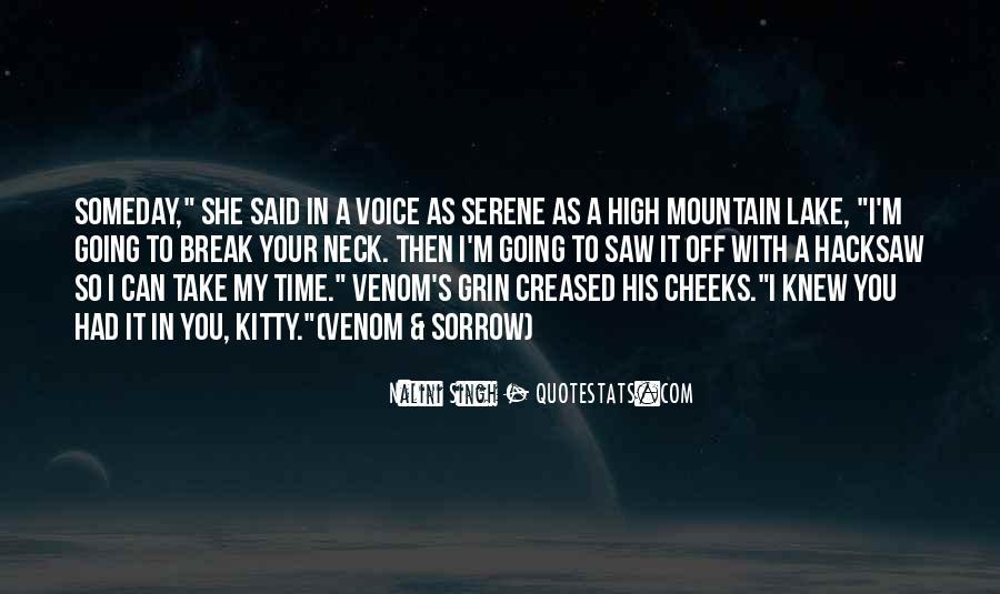 High Mountain Quotes #362634