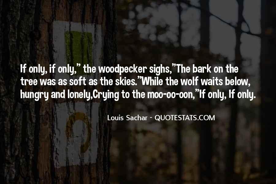 Holes Sachar Quotes #5811