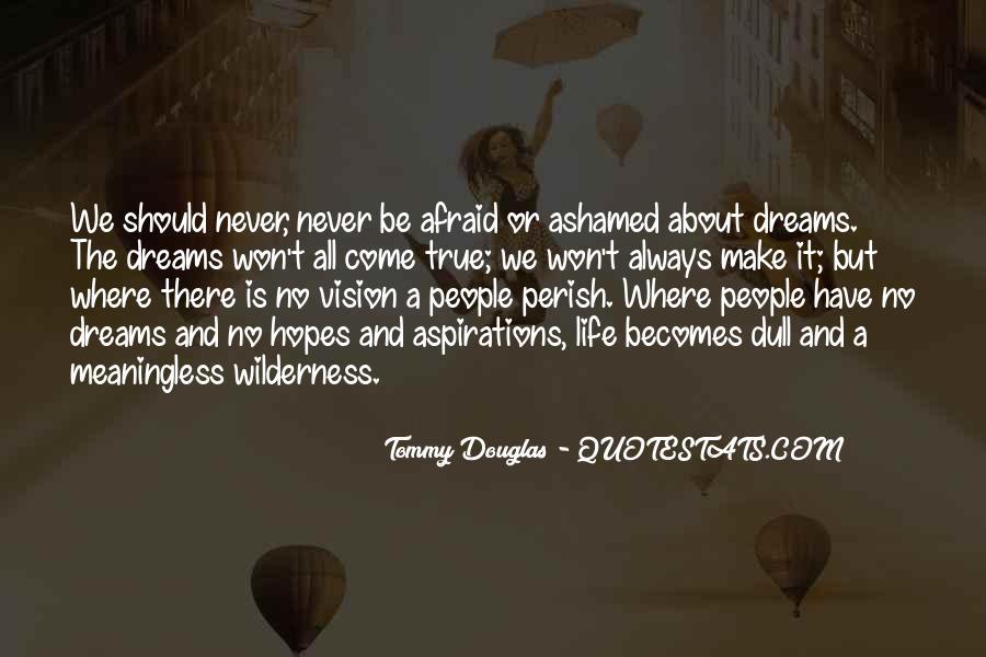 Hopes Dreams And Aspirations Quotes #439006