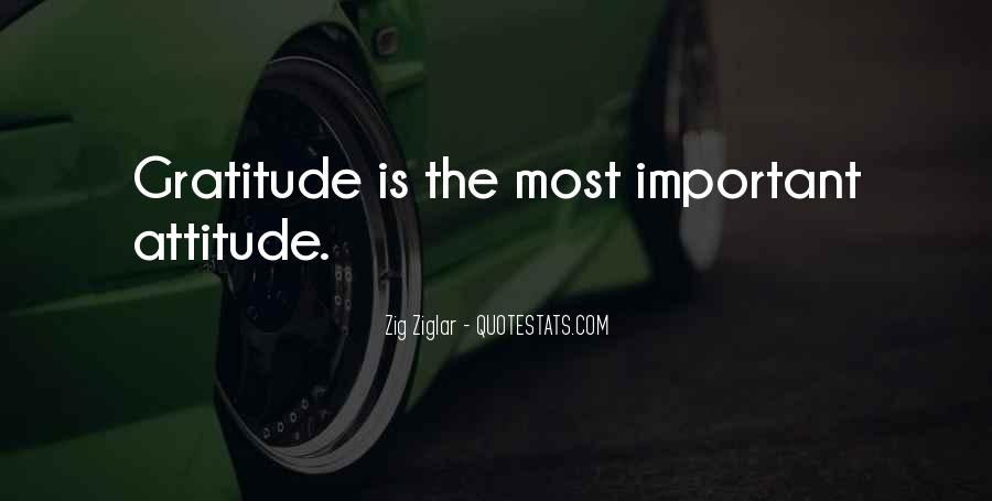 How Important Someone Is Quotes #1690