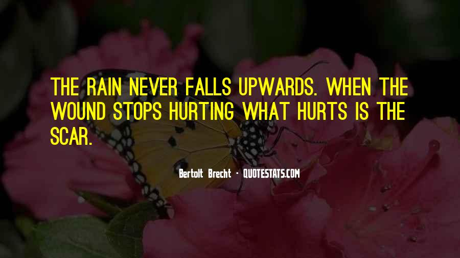 Hurt Before Quotes #22569