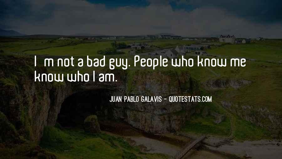 I Am Bad Guy Quotes #75197